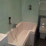 bathroom toilet and bathtub